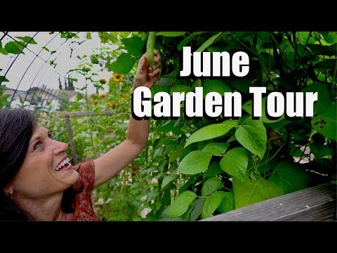 June Garden Tour - Out with the Old, In with the New - Summer's just Getting Started in the Garden!