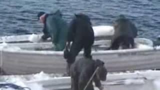 Ladovská zima 2006 v Norsku