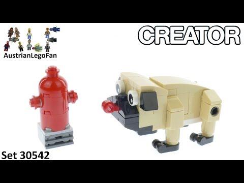 Vidéo LEGO Creator 30542 : Cute Pug (Polybag)
