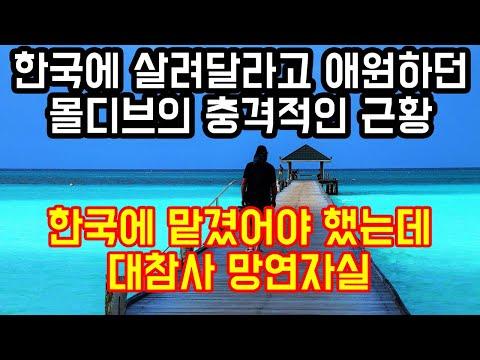 한국에 살려달라고 애원하던 몰디브의 충격적인 근황