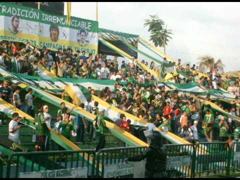 """""""AGUANTE ARTILLERO"""" Barra: Artillería Verde Sur • Club: Deportes Quindío"""