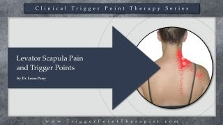 Levator Scapula Pain and Trigger Points