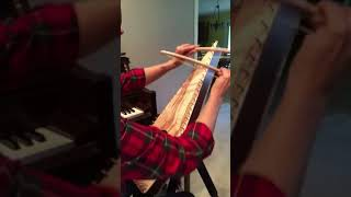 Sound of Silence on Bowed Psaltery
