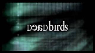 Trailer of Dead Birds (2004)