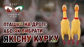 Блог «Тайный агент». Птичка на проводе или как выбрать качественную курицу
