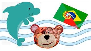 Animales marinos en portugues - Nombres y sonidos