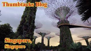 Wet & Wild: Singapore