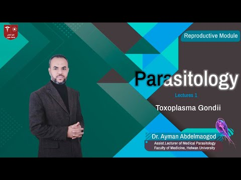 Hol élnek Toxoplasma