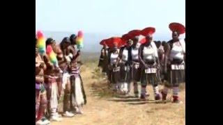 Thokozani Langa-Savumelana