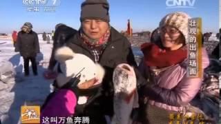 20140219 美丽中国乡村行 最美冰雪行——查干湖冬捕