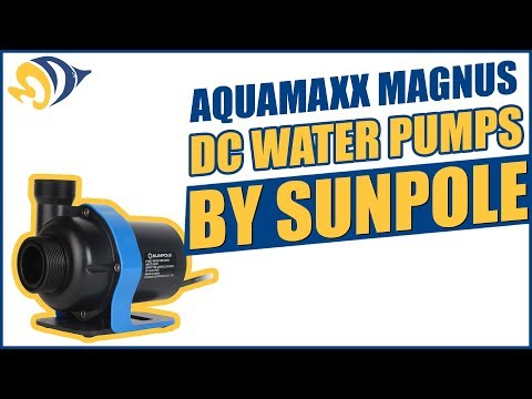 AquaMaxx Magnus DC Water Pumps by Sunpole: Strong, Quiet and Reliable