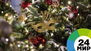В Подмосковье срубили главную новогоднюю елку России – ей 100 лет - МИР 24
