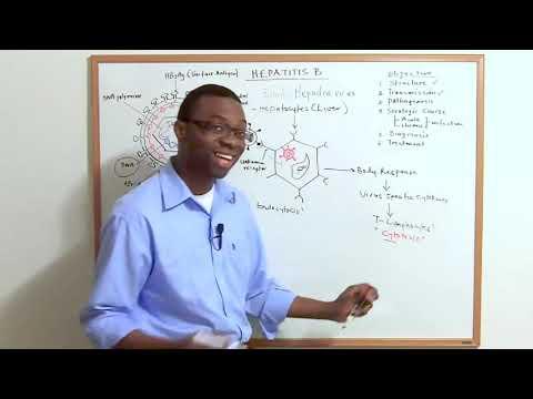 Prosztatagyulladás és fehérje