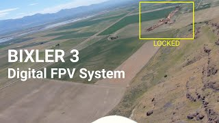 FPV flying with a hawk #7