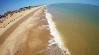 Rona & The Beach Trees / fpv freestyle