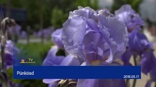 TV Budakalász / Budakalász Ma / 2018.05.17.