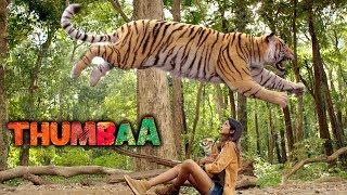 Thumbaa Movie Scenes   Keerthi Pandian and vilagers save the tiger   Darshan   KPY Dheena