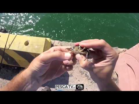 Finestra per la pesca russa