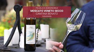Moscato Secco - Colli Euganei - Cantina Benato