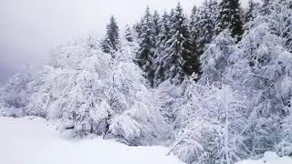 تساقط الثلوج في ريزا | طرابزون