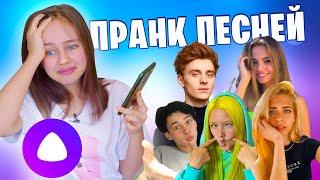 Троллю Яндекс Алису песнями лайкеров, тиктокеров и блогеров