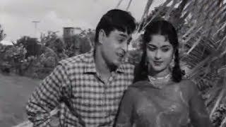 Teri Pyaari Pyaari Surat - Superhit Classics Romantic Song