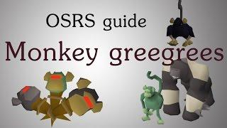 [OSRS] Monkey greegrees guide