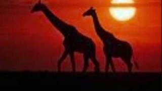 akon feat tiken jah fakoly - mama africa