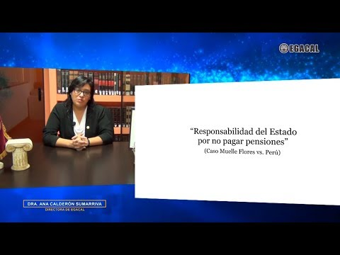 Responsabilidad del Estado por no pagar pensiones. Caso Muelle Flores vs. Perú - Luces Cámara Derecho 125