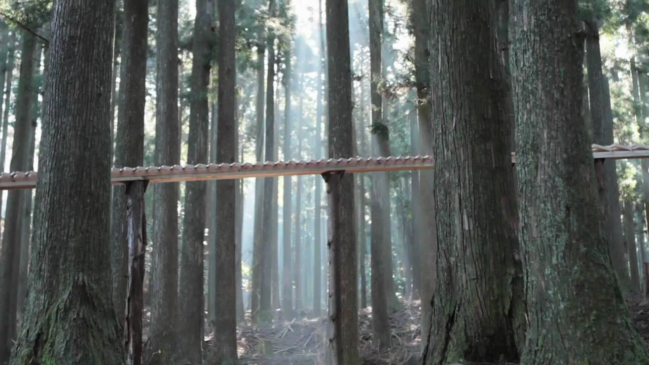 Massive Xylophone Constructed In The Woods To Sell Japanese Mobile Phone