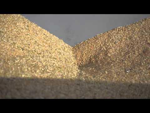 Перемещение зерна в завальной яме зернокомплекса