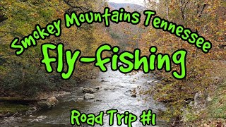 Fly Fishing the Smoky Mountains National Park Tennessee  (Part 1)