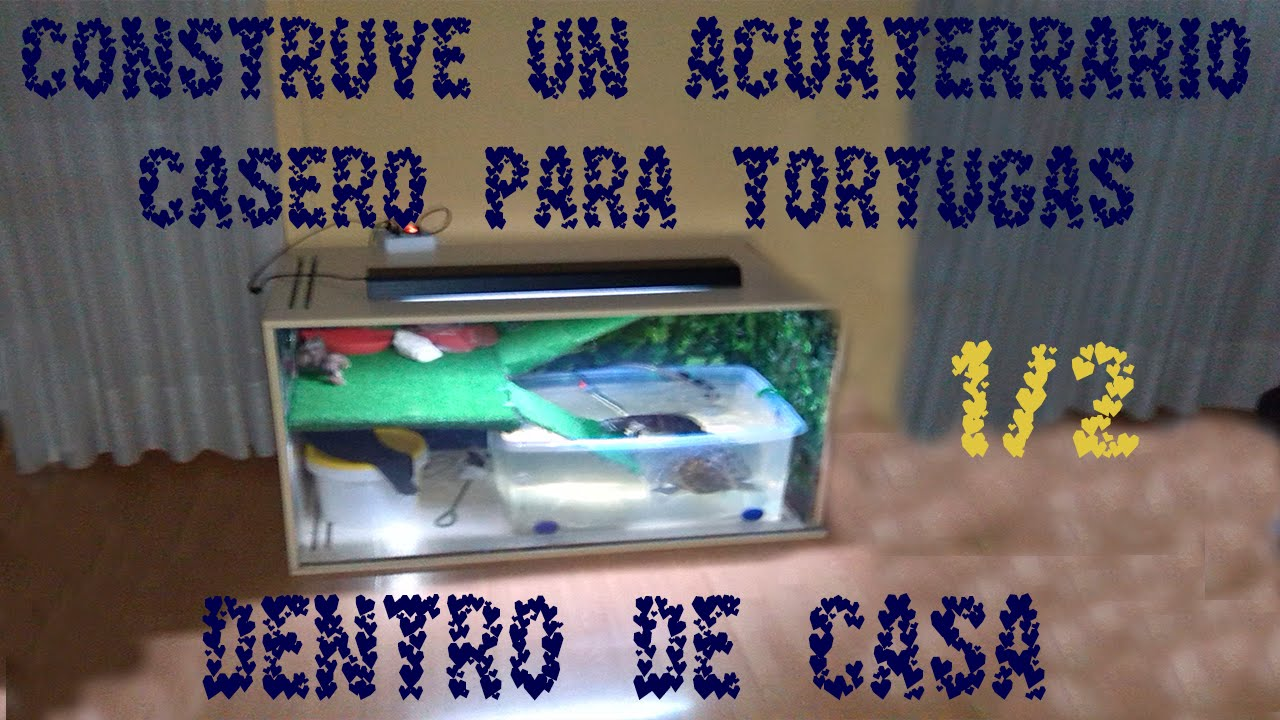 ACUATERRARIO CASERO PARA TORTUGAS 1/2 / PARA TORTUGAS GRANDES DENTRO DE CASA