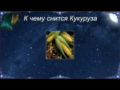 К чему снится Кукуруза (Сонник)