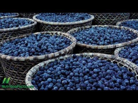 University of Florida Acai Berry Study on Cancer