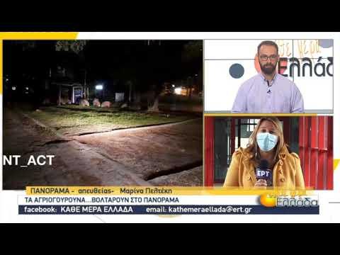 Επανεμφάνιση αγριογούρουνων στο Πανόραμα   10/11/2020   ΕΡΤ