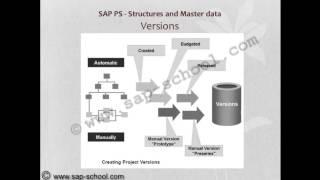 SAP PS VIDEO TRAINING