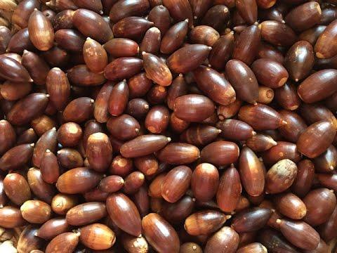 Los cereales que se pueden comer en la diabetes
