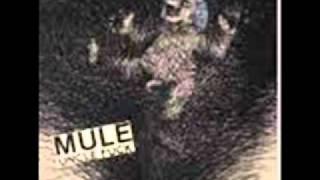 MULE  uncle fuck