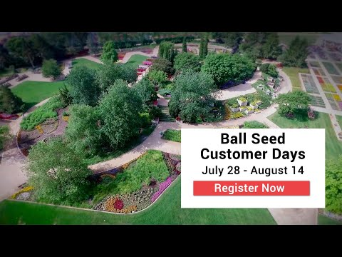 Join us in The Gardens at Ball - July 28-August 14 thumbnail