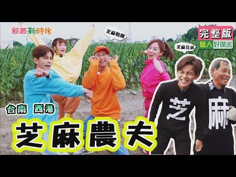 芝麻兄弟超可愛 蒴果收割加立曬 芝麻農事樣樣來 - 綜藝新時代 玩台南
