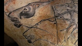 What Can Stone Age Art Tell Us About Extinct Animals?