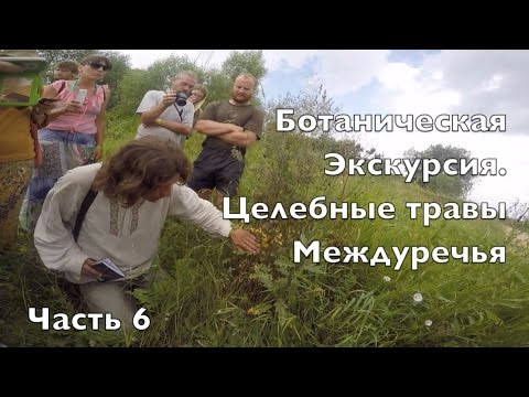 Часть 6. Ботанический экскурсия. Лекарственные травы Междуречья
