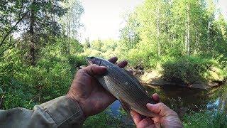 Рыбалка. Ловля хариуса на таёжной речке. Осень 2018.