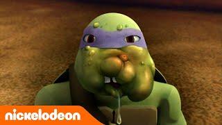 Черепашки-ниндзя | Нападение жуков | Nickelodeon Россия