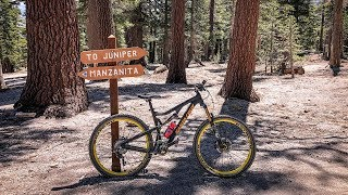 Juniper - The serene side of Mammoth Bike Park