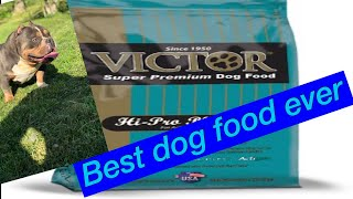 What dog food should you feed your American bully