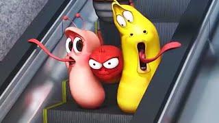 LARVA | EL METRO | Película de dibujos animados | Dibujos animados para niños | WildBrain