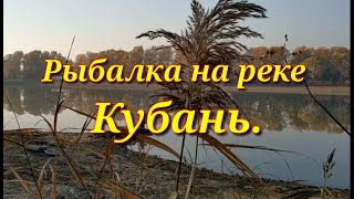Рыбалка в прогрессе краснодаре на реке кубань