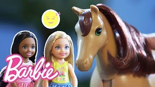 Barbie And Chelsea Dolls' Baby Horse Can't Sleep | Barbie